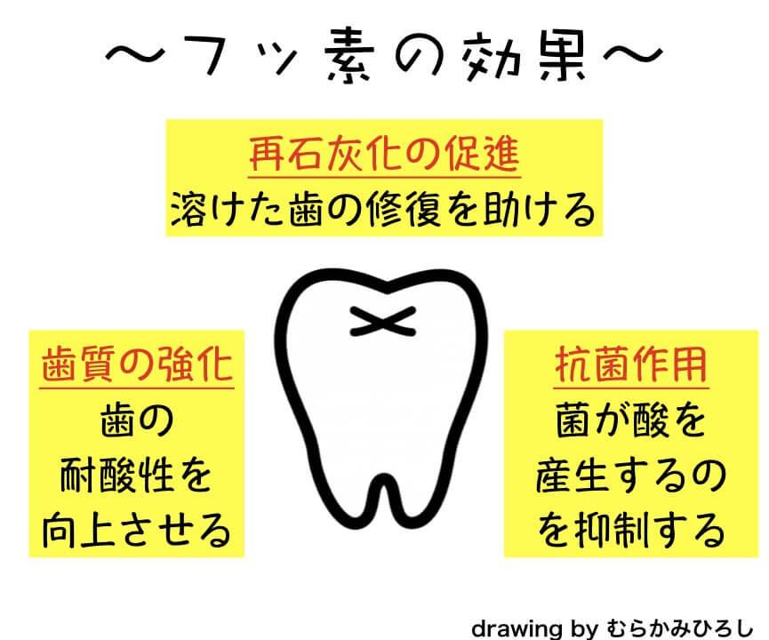 フッ素が歯に働きかける効果の図解