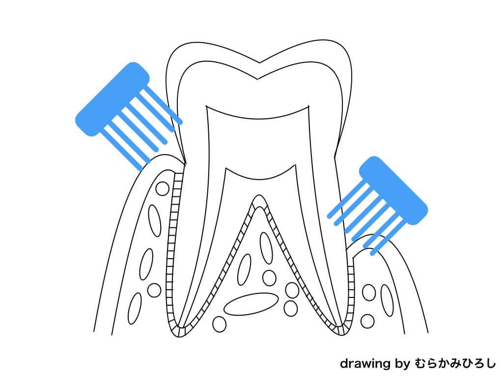 歯ブラシの当て方テキスト